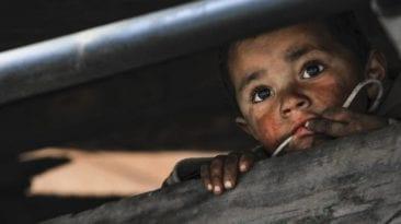 75 % تستحق الإغلاق.. مأساة أطفال في سلخانات دور الأيتام