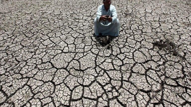 أزمة نقص المياه تهدد المحاصيل الزراعية في مصر
