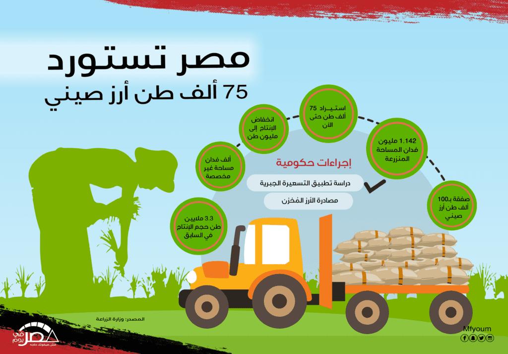 مصر تستورد 75 ألف طن أرز صيني (انفوجرافيك)