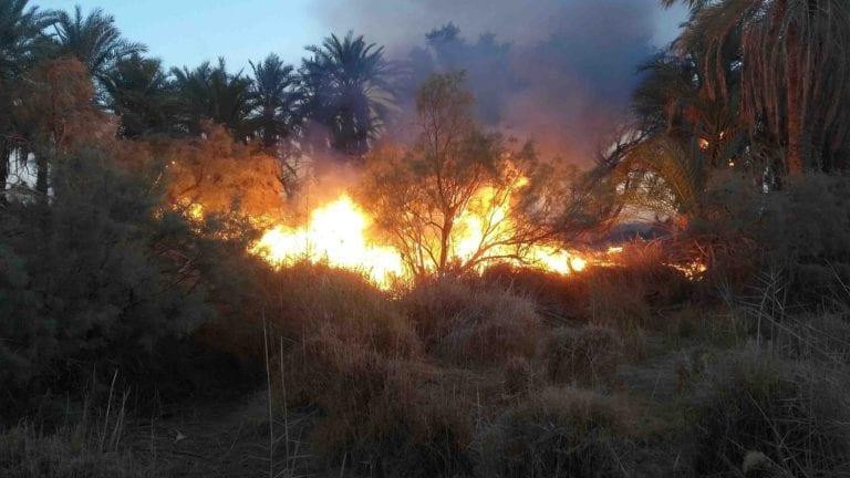 الحرائق تلتهم المزارع في الوادي الجديد