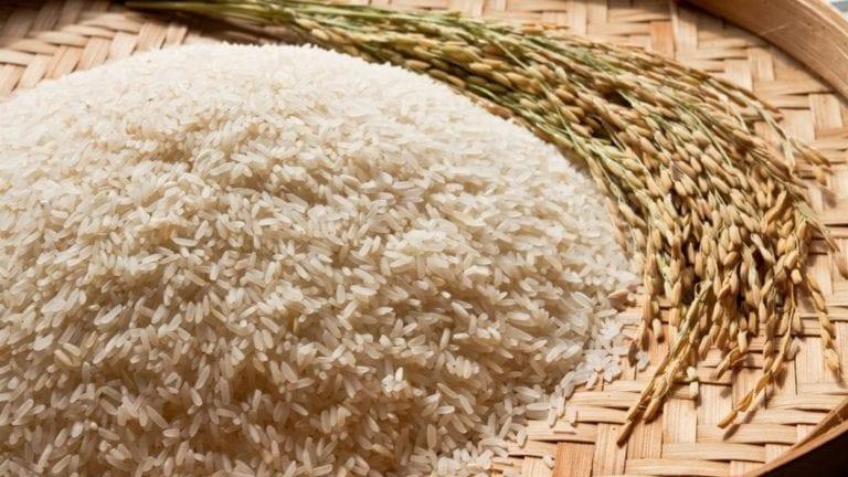 ارتفاع أسعار الأرز في مصر