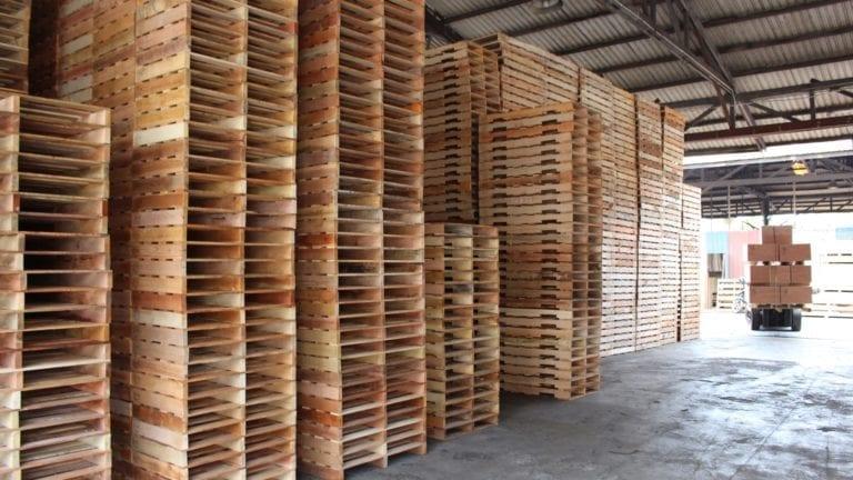 الخشب التركي