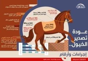 تصدير الخيول
