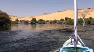 تعديات وصرف مخلفات وجهود للتصدي.. متى تنتهي معاناة النيل
