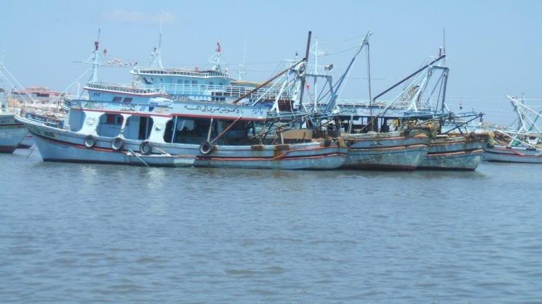 حظر الصيد في البحر الأحمر