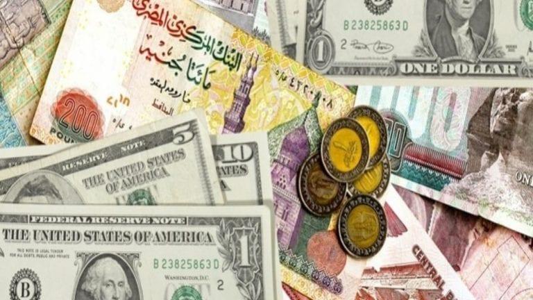 نشرة الحصاد: سك العملة تصدر 8 أشكال جديدة للعملة المعدنية.. وحل مجلس نقابة الصيادلة