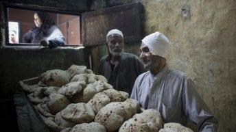 الحصاد: 56 مليار جنيه لشراء جرارات القطارات.. والإعلان عن منظومة خبز جديدة