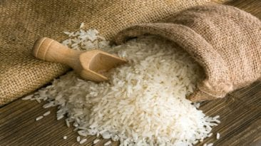 التموين تكشف عن عروض توريد الأرز.. والصيني مرشح للفوز