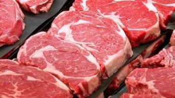 أمريكا تنتقد الإجراءات المصرية في استيراد اللحوم