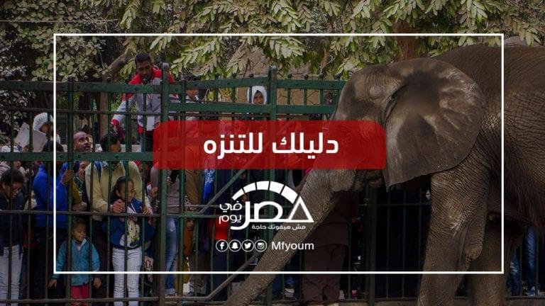 """خروجات عيد الفطر في مصر.. """"ملاهي شعبية"""" وجنينة وقلعة وبرج"""