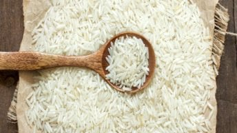 الحصاد: التموين تكشف عن عروض لتوريد الأرز.. وانطلاق امتحانات الثانوية الأزهرية غدا