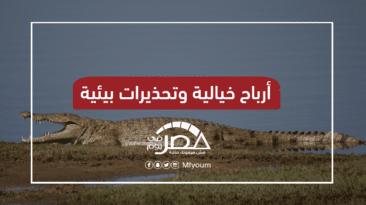 تجارة التماسيح في مصر.. لماذا اقتحمت الحكومة المجال؟