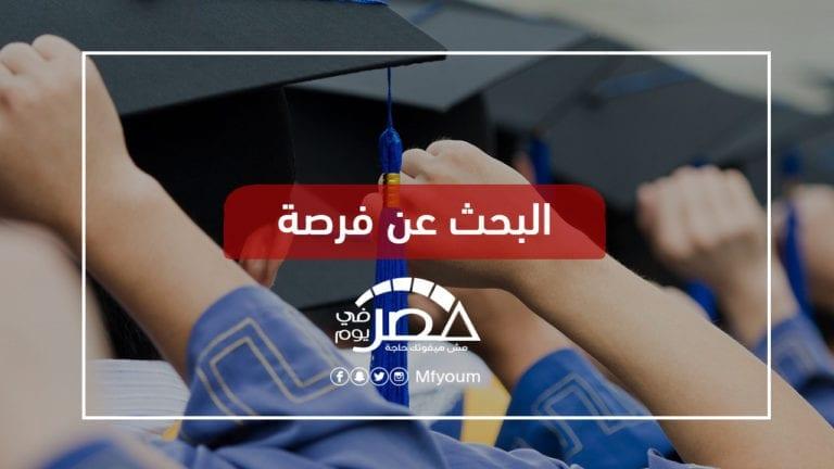 بعد تدهور التعليم الحكومي.. هل يجد الطلاب ضالتهم في المنح الدراسية؟