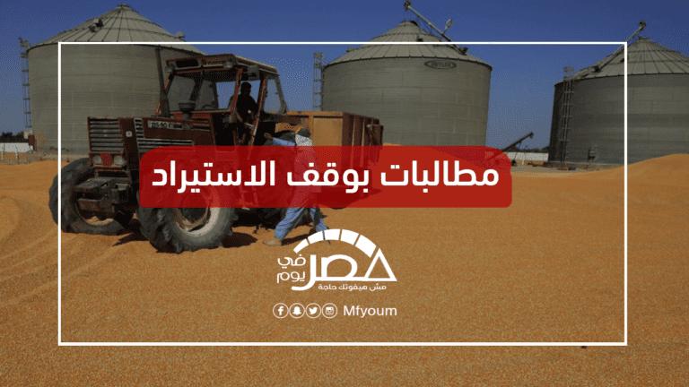 هل تتأثر واردات مصر من القمح الروسي بالغبار النووي؟