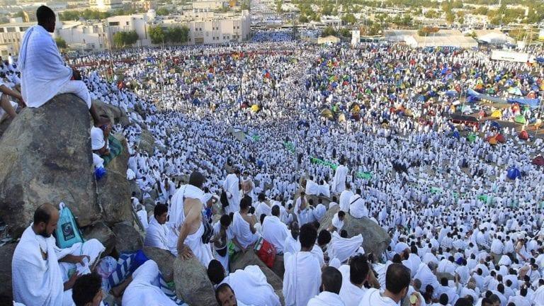 الحصاد: تصعيد الحجاج إلى عرفات.. ومد تنسيق الشهادات المعادلة العربية