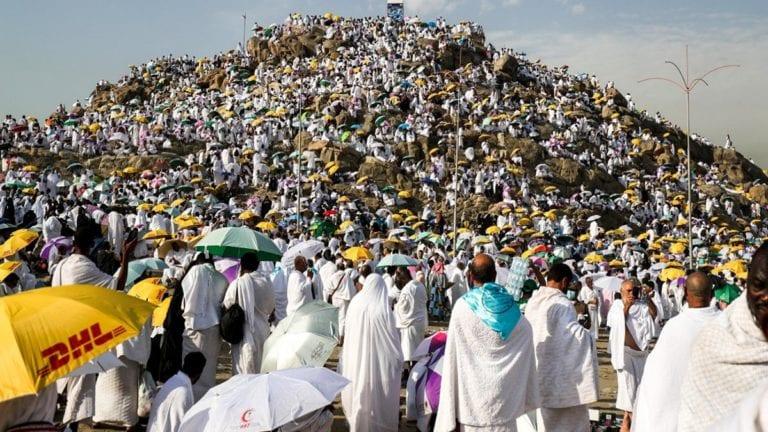 التضامن تبدأ في تصعيد حجاج الجمعيات الأهلية إلى عرفات
