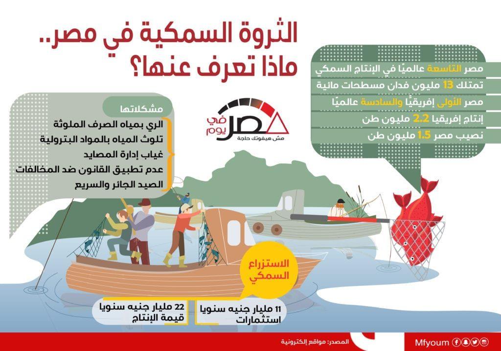 الثروة السمكية في مصر.. ماذا تعرف عنها؟ (إنفوجراف)