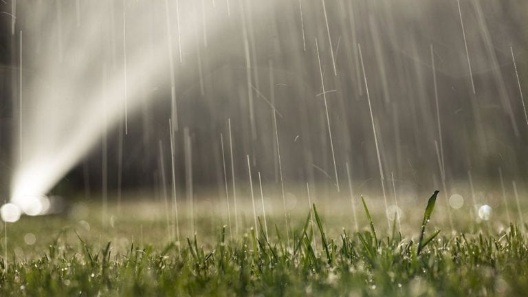 """""""الزراعة"""" تتجه لتكنولوجيا الري المطري للتغلب على نقص المياه"""