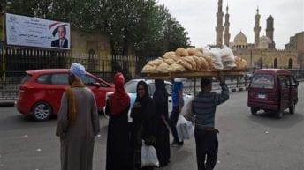 الحصاد: فتح باب التظلمات في مكاتب التموين.. وضبط آثار فرعونية في الكويت