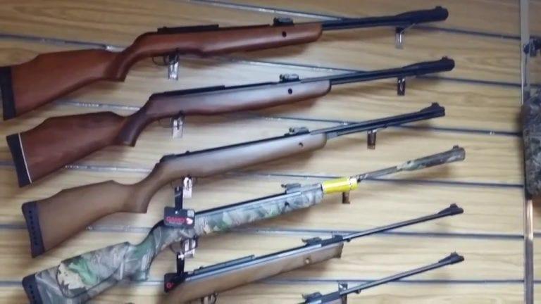 وزارة الداخلية تُرخص أسلحة صيد العصافير والطيور