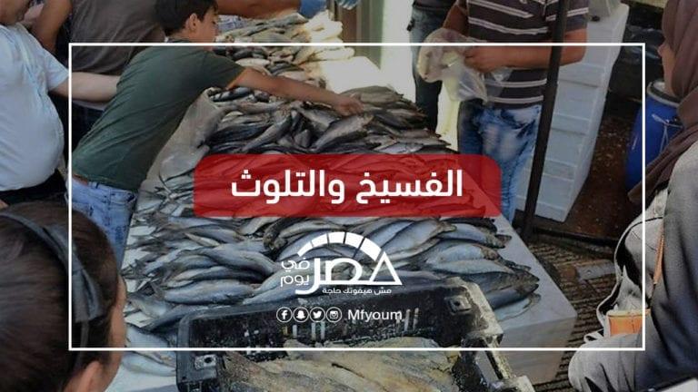 أسماك فاسدة وأخرى مسممة.. متى تتوقف حالات الإصابة بالإسكندرية؟