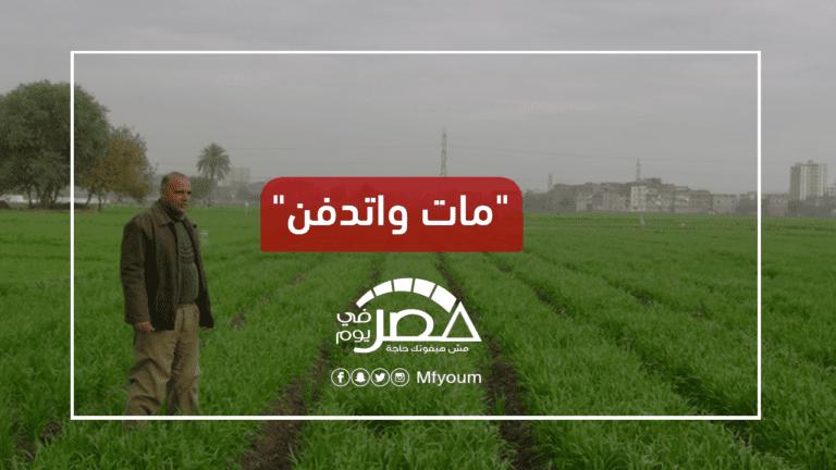 لماذا غاب دور الإرشاد الزراعي عن الفلاحين؟