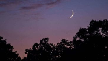 فلكيا.. تعرف على موعد إجازة المولد النبوي الشريف