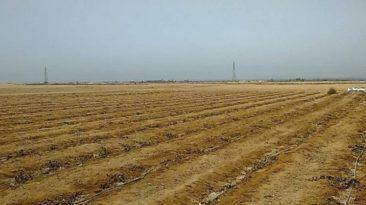 بيع أراضي بالمزاد العلني في 4 محافظات