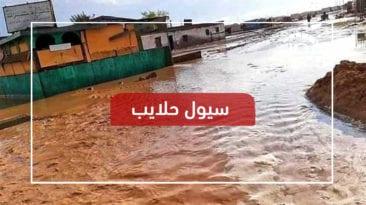 حلايب تستغيث.. السيول تدمر مئات البيوت وتقطع جميع الخدمات (فيديو)
