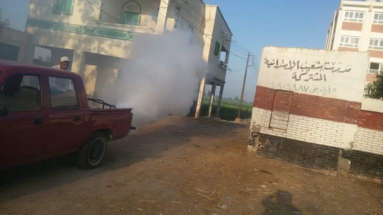 أسراب البعوض تهاجم أحياء الإسكندرية.. شكاوى وأسباب