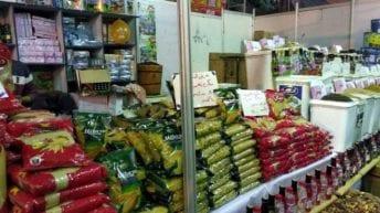 الحصاد: خفض جديد لأسعار السلع الغذائية.. ووزارة الزراعة تحارب البرودة