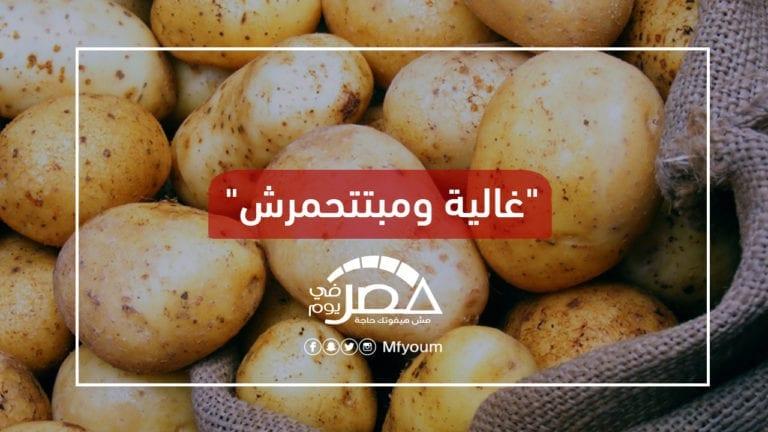 ارتفاع أسعار البطاطس في الأسواق