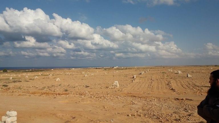 شركة تنمية الريف المصري