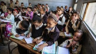 #التعليم_في_مصر_محتاج.. تطوير أم تغيير شامل؟