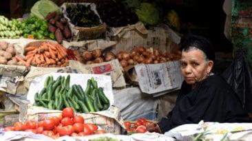 """بعد ارتفاع أسعار الطماطم.. """"الفلاحين"""" تطالب بوضع خطة"""