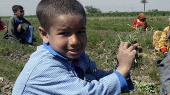 الحصاد: النائب العام يقرر إنشاء مكتب حماية الطفل.. وشعبة الأدوية تعلن اختفاء 165 نوعا