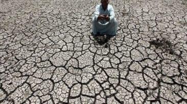 وزير الري السابق: نواجه تراجع نصيب الفرد من المياه وهبوط مستوى الدلتا