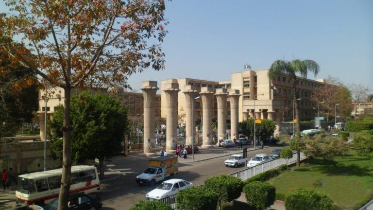 الحصاد: ارتفاع أسعار السكر محليا.. وحظر النقاب في جامعة عين شمس