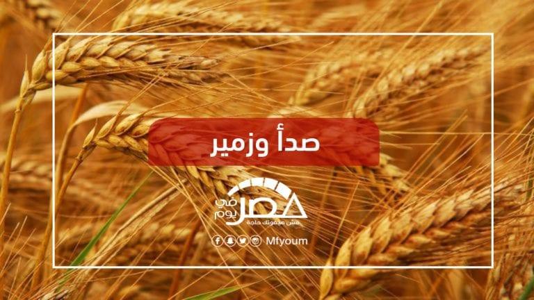 حملة قومية لزيادة إنتاج القمح