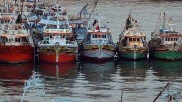 عودة الصيادين المصريين من اليمن