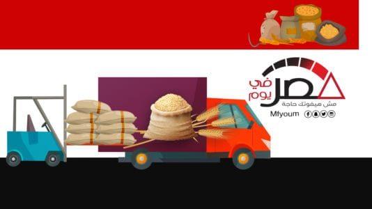 ارتفاع حجم استيراد القمح في مصر خلال 2019 (إنفوجراف)