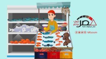 واردات مصر من الأسماك خلال 11 شهرا.. تعرف (إنفوجراف)