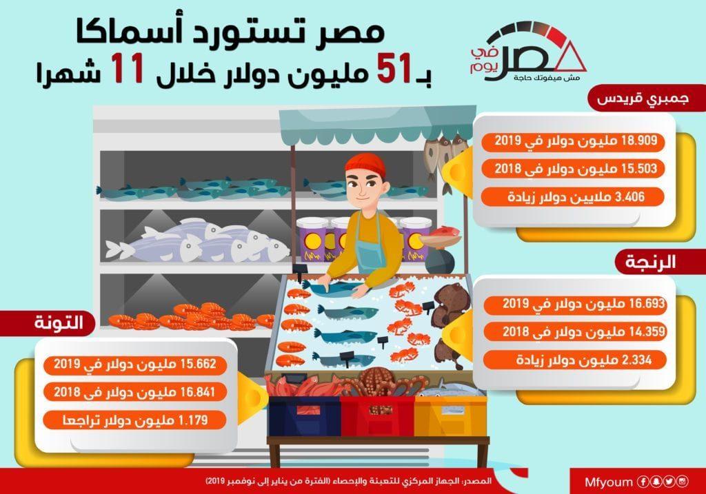 واردات مصر من الأسماك خلال 11 شهرا.. تعرّف (إنفوجراف)