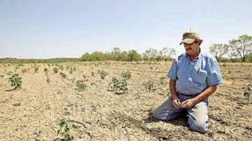 انتحار مزارع في الشرقية: السادس خلال أسبوع