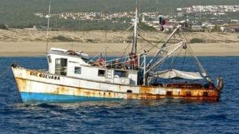 التحالف باليمن: مصرع 3 صيادين مصريين نتيجة انفجار لغم