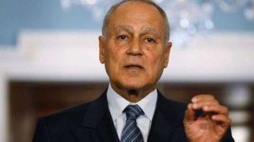 أحمد أبو الغيط يتحدث عن ثورات الربيع العربي